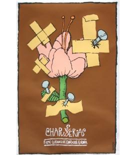 Chapuserias